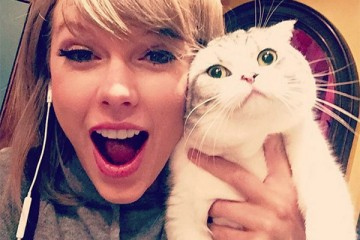 national-cat-day-see-pics-of-taylor-swift-more-celebs-with-their-cute-kitties-ftr